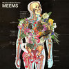 MEEMS Cover Art