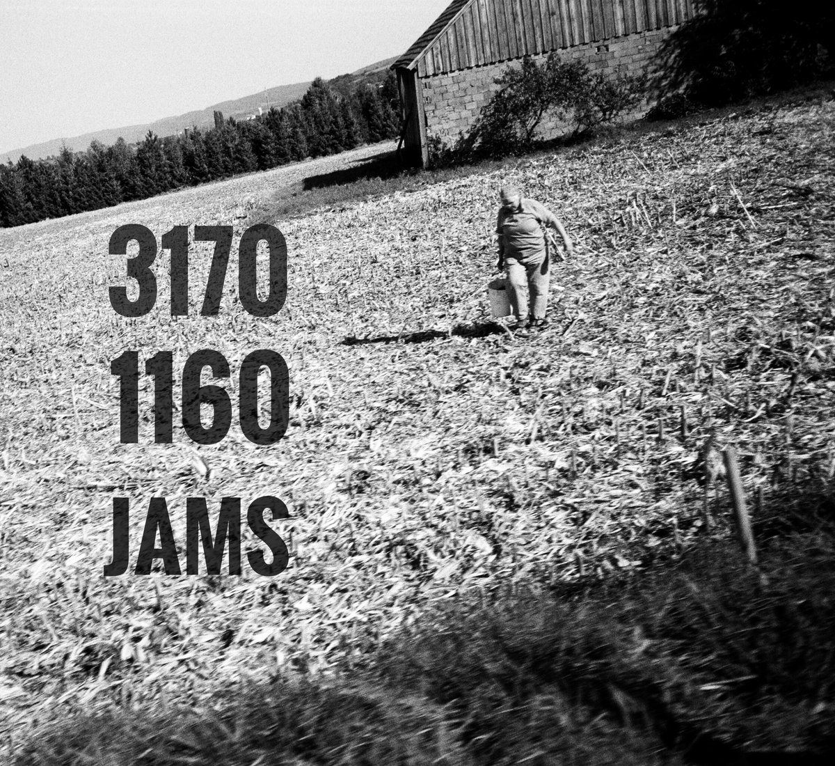 Hinterhof Records Kunstler 3170 1160 Jams