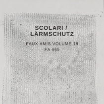Faux Amis vol. 18: Scolari (FA #65) cover art