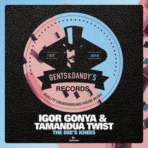 Igor Gonya & Tamandua Twist - The Bee's Knees cover art