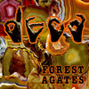 Forest Agates Cover Art