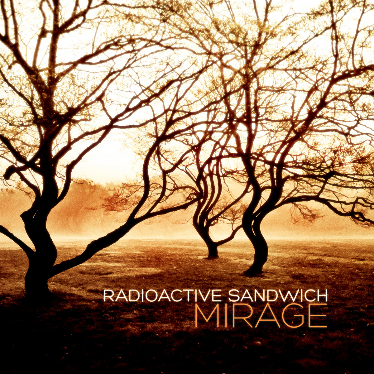 An Echo is the Shadow of a Sound | Radioactive Sandwich