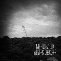 Aestas Obscura cover art