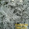 Random Tracks Cover Art