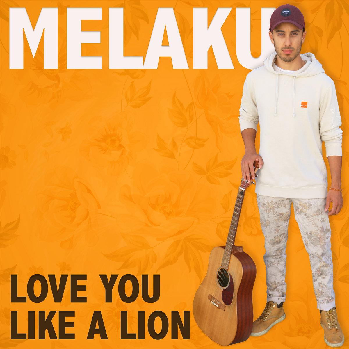 Love You Like A Lion by Melaku