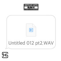 Untitled 012 pt 2.WAV cover art