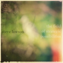 The Field Of Strategic Possibilities cover art