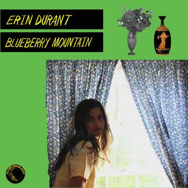 Blueberry Mountain main photo