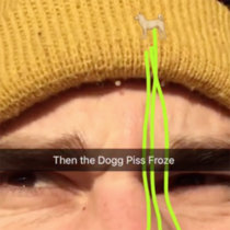 Then the Dog Piss Froze cover art