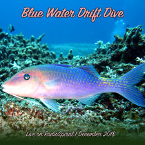 Blue Water Drift Dive #4 cover art