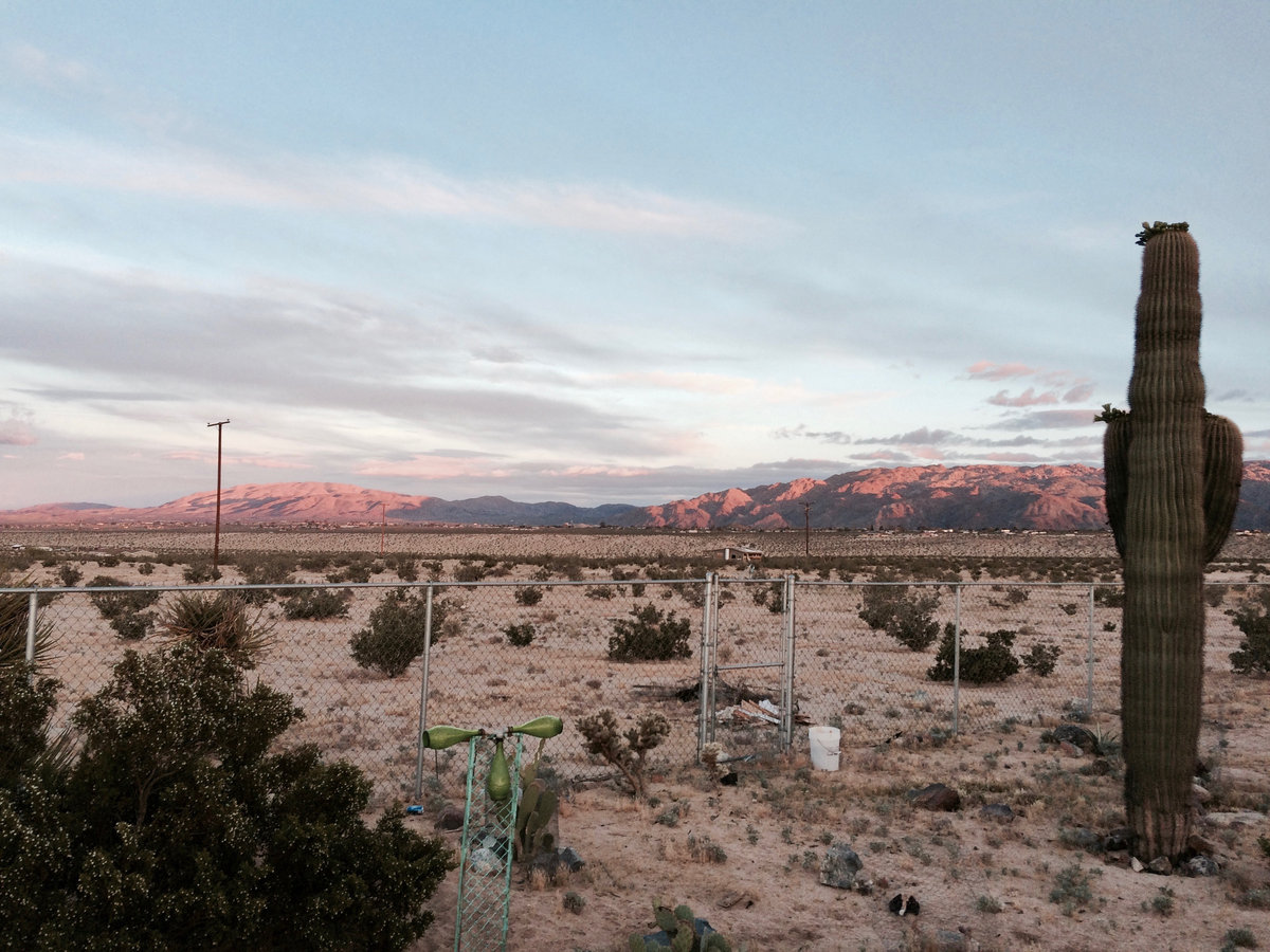 Albuquerque by Arroyo Rogers