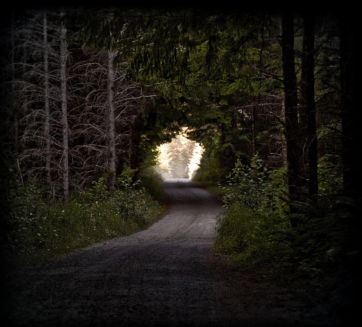 Captivating Love As A Dark Hallway
