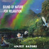 Sound of Nature for Relaxation Cover Art