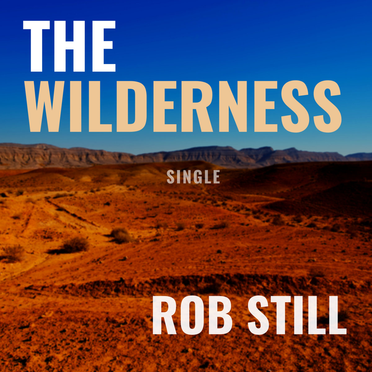The Wilderness [Single] by Rob Still