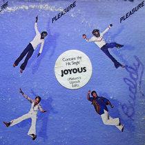 Pleasure - Joyous (Extended Uprock Edit) cover art