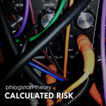 Calculated Risk cover art