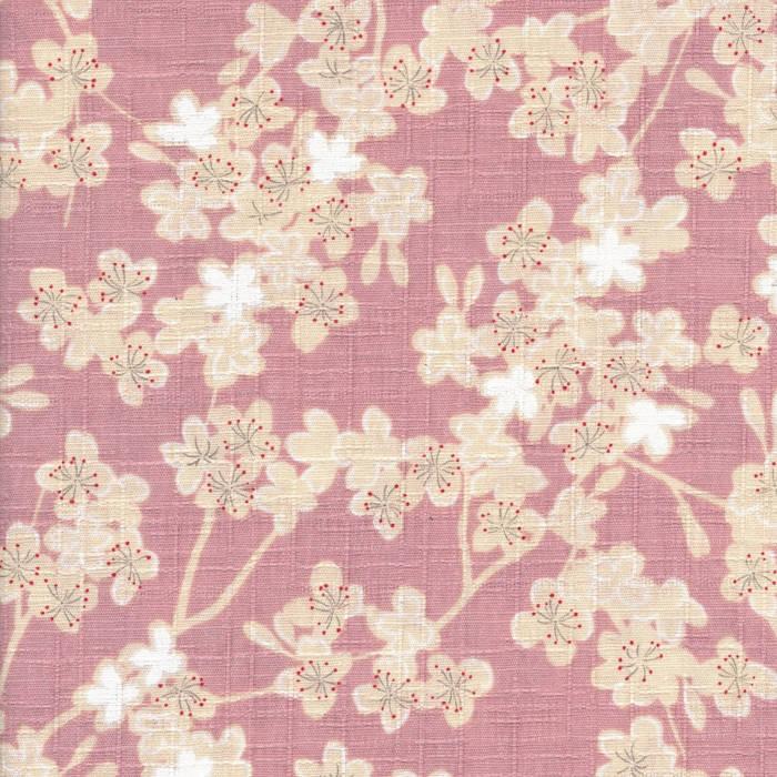 Sakura cover art
