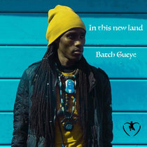 In This New Land cover art
