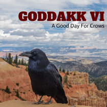 VI: A Good Day For Crows cover art
