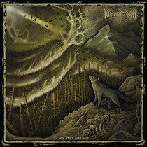 Of bark and Ash cover art