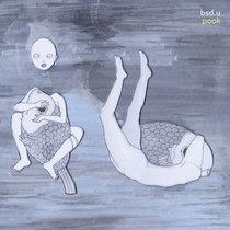 bsd.u - pook cover art