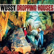 Wussy - Dropping Houses (Single) cover art