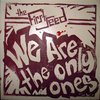 We Are The Only Ones Cover Art