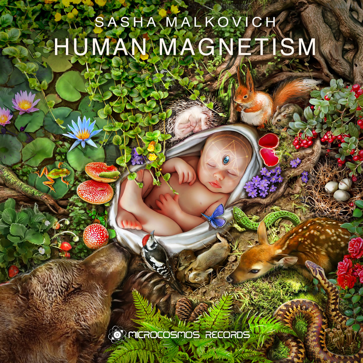 Human Magnetism   Sasha Malkovich   Microcosmos Chill-out