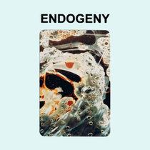 Endogeny cover art
