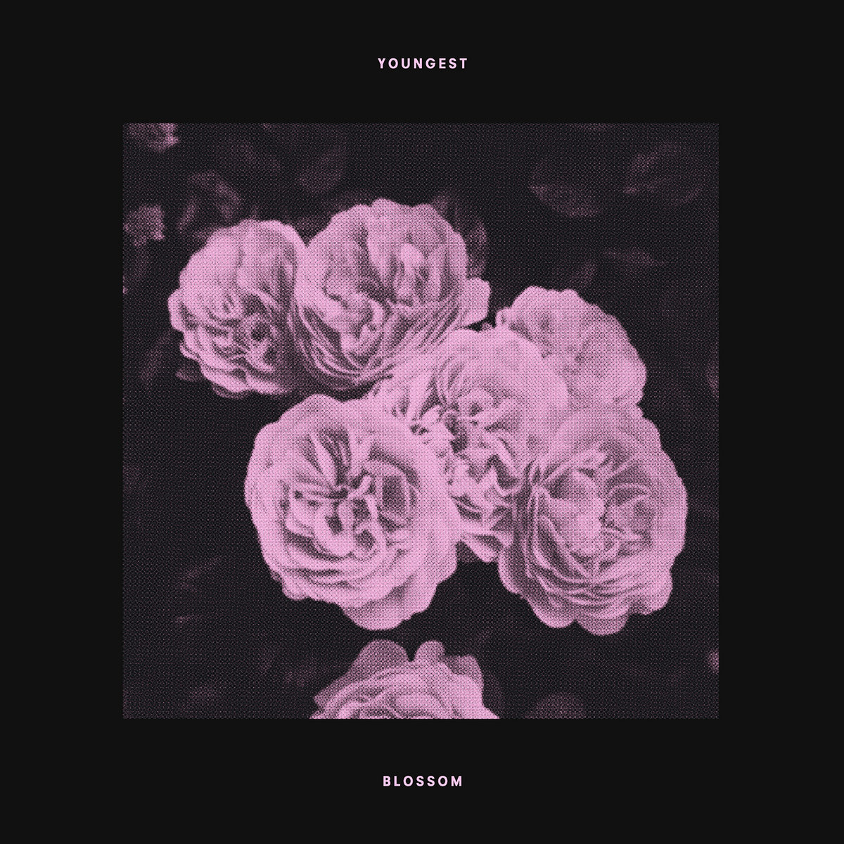 Youngest - Blossom [single] (2017)