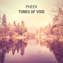 Tones Of Void cover art
