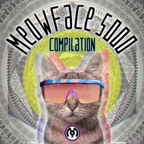 MeowFace 5000 cover art
