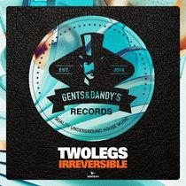 Twolegs - Irreversible cover art