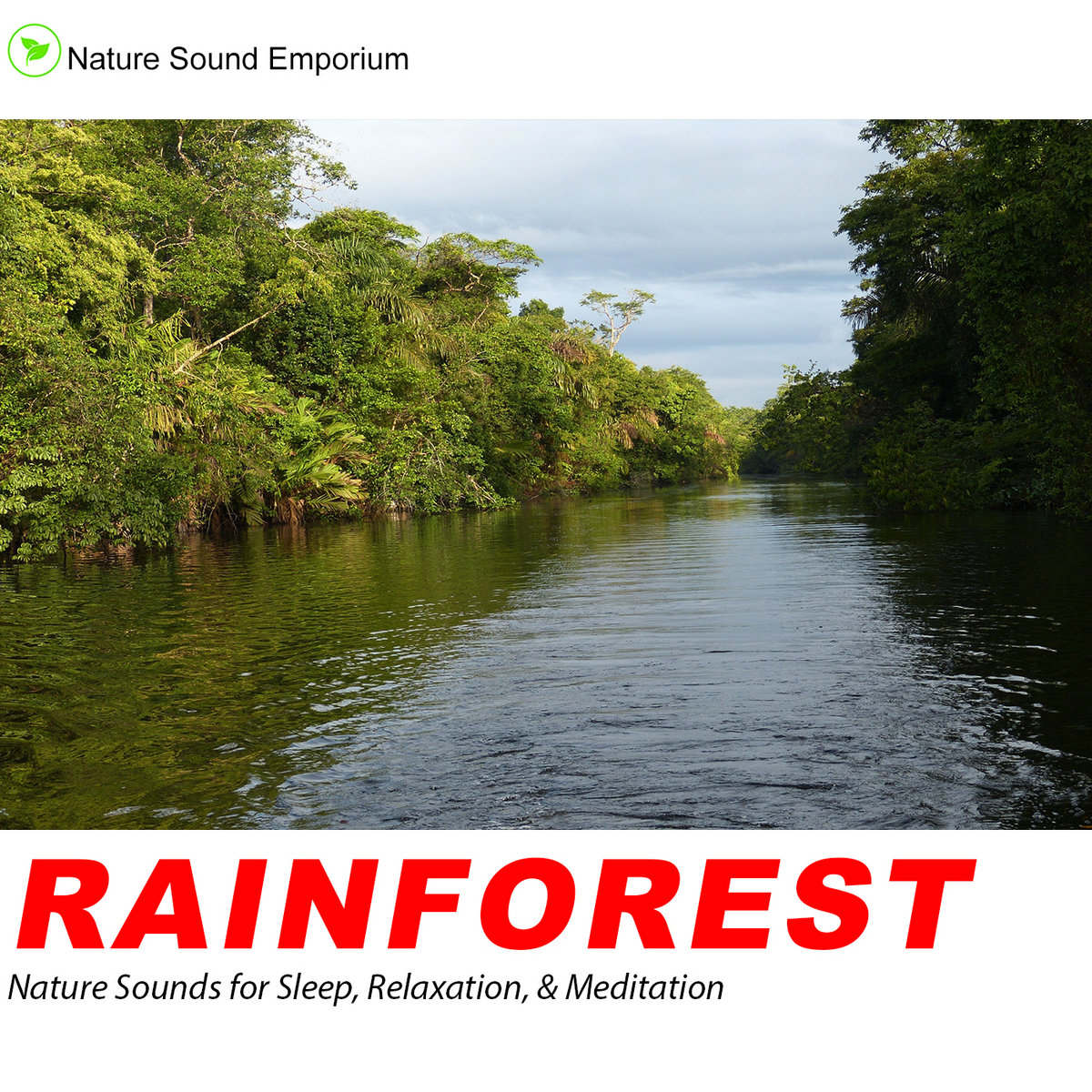 Rainforest Sounds - Nature Sounds for Relaxation, Meditation