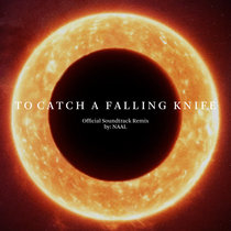 To Catch A Falling Knife OST (Naal Remix) cover art