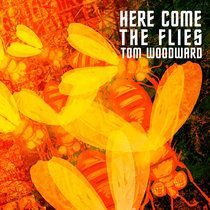 Here Come The Flies cover art