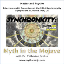 Matter and Psyche: Interviews with Presenters at the 2014 Synchronicity Symposium cover art