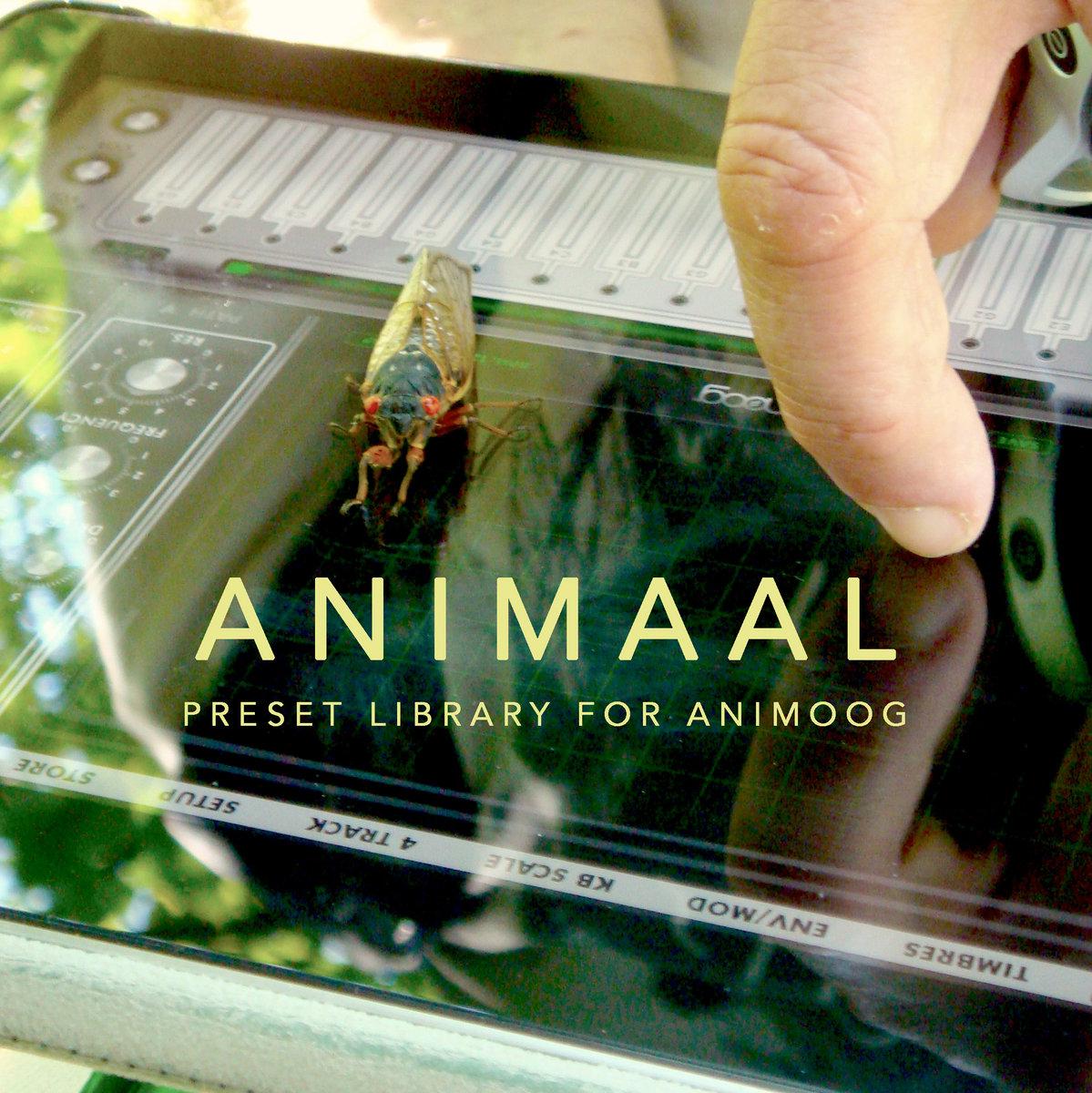 Animaal: Presets for Animoog | Terra Nova Music