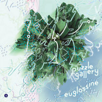 Puzzle Gallery cover art