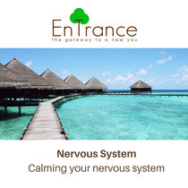 Nervous System - Calming your nervous system cover art