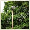 Vandervalls EP Cover Art