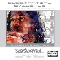Substantial Evidence [MIX] cover art