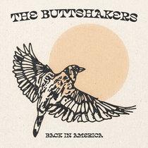 Back In America cover art