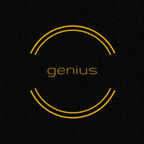 13: genius cover art