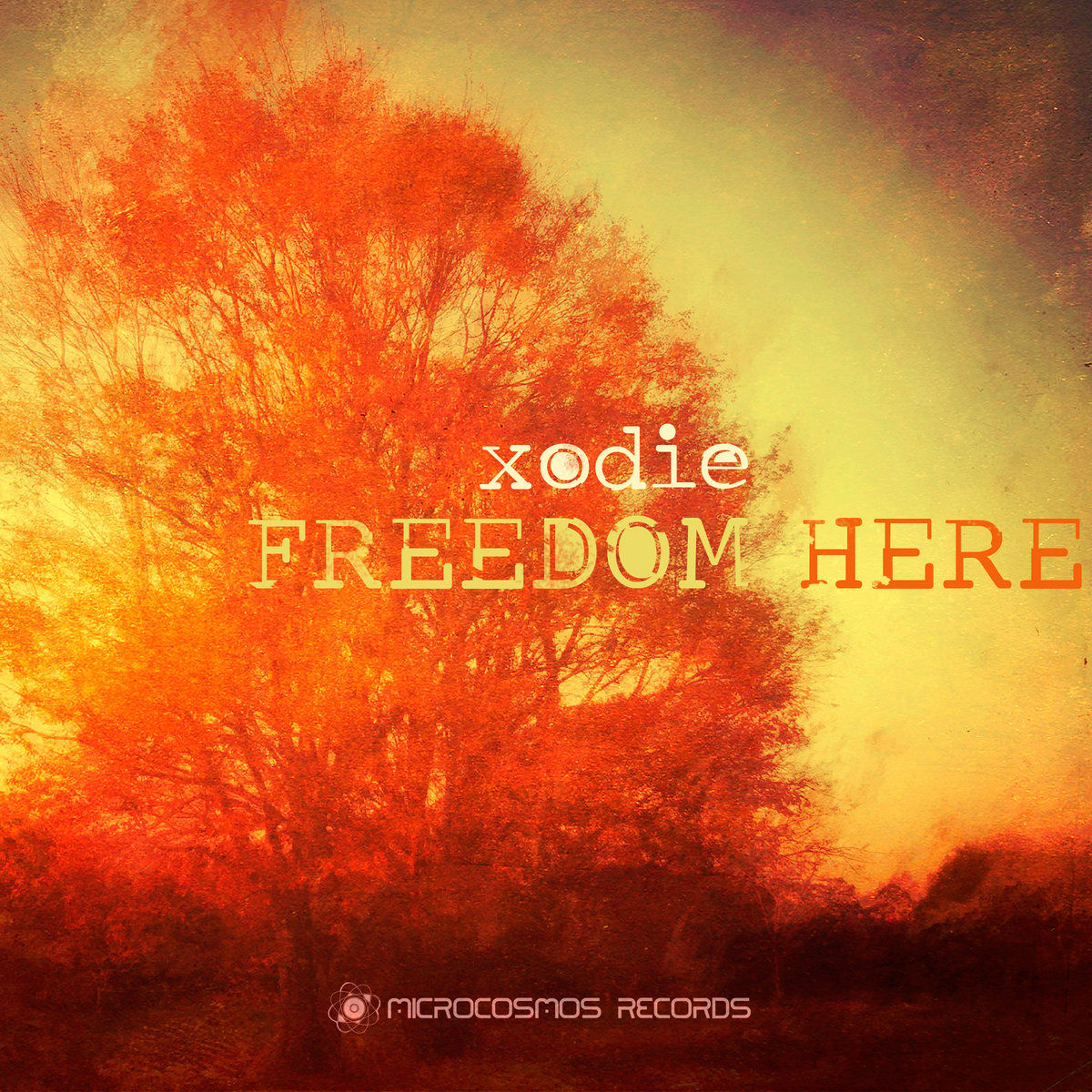 Freedom Here | Microcosmos Chill-out & Ambient