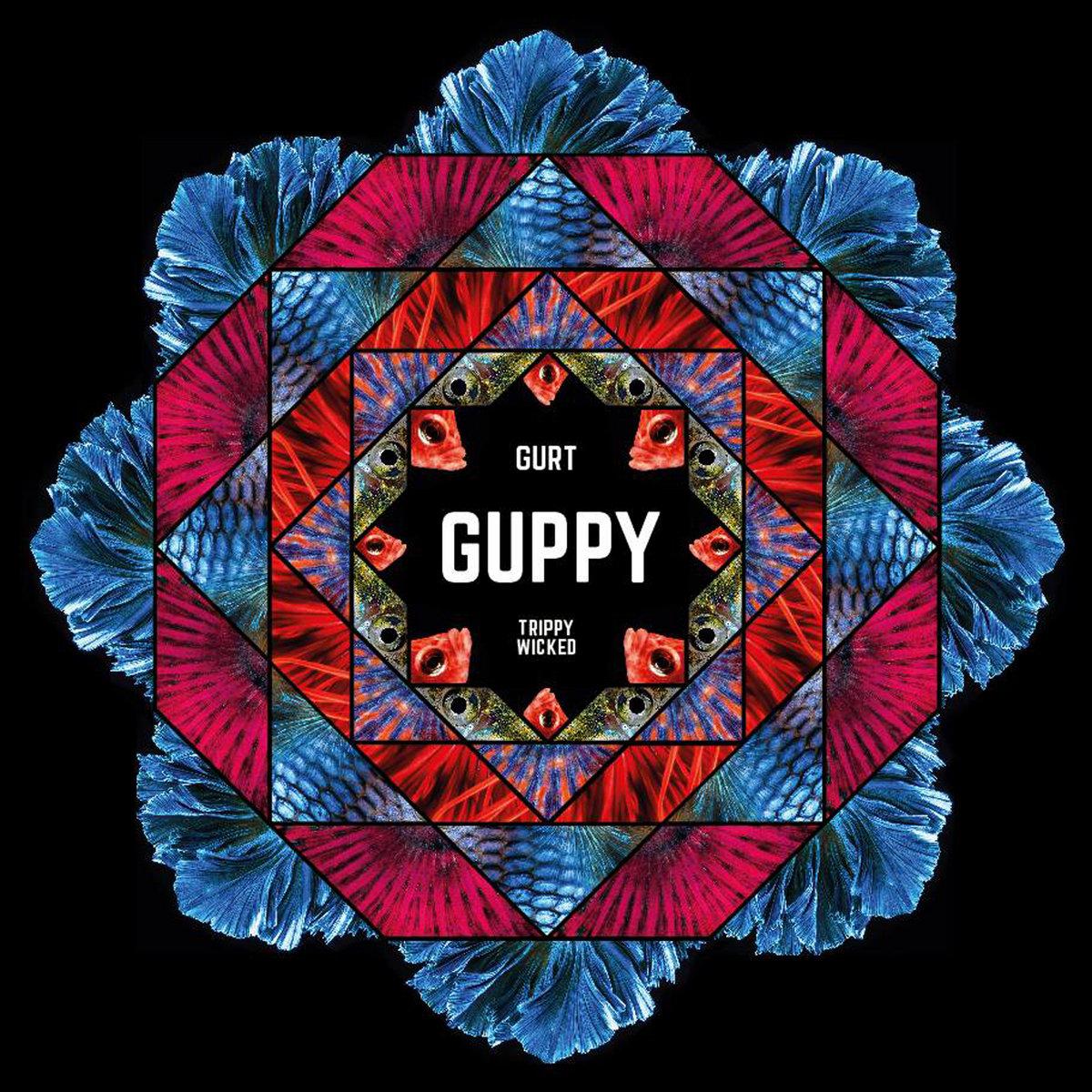 guppy gurt
