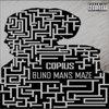 Blind Man's Maze Cover Art