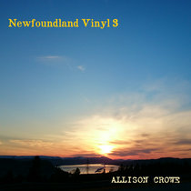 Newfoundland Vinyl 3 cover art
