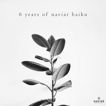 6 years of naviar haiku cover art