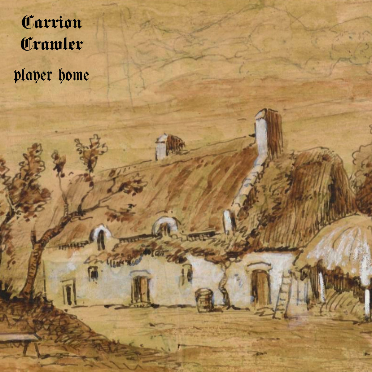 Player Home Carrion Crawler